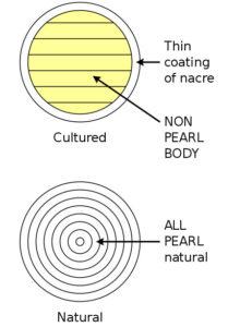 Диаграмма сравнения сечения культивированного жемчуга, верхний, с натуральным жемчугом, нижний