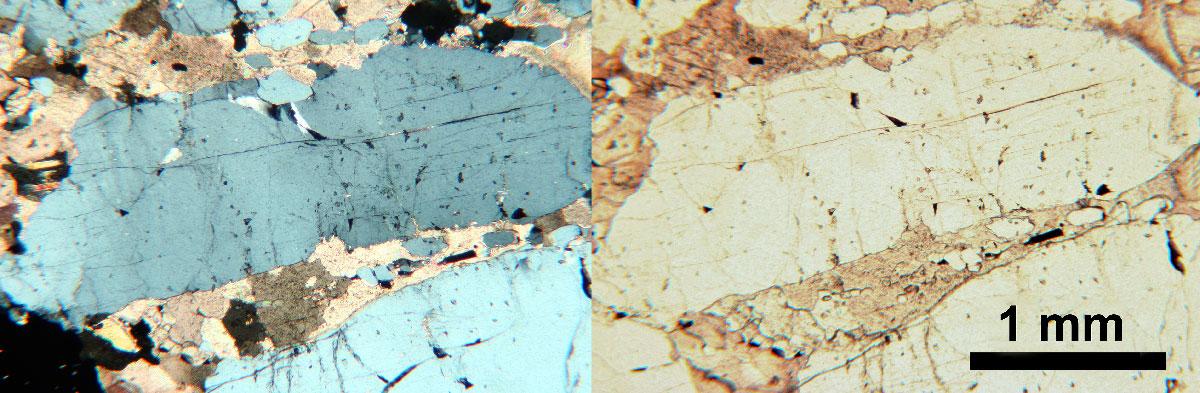 Апатит на микрофотографиях шлифа из апатитового рудника Сиилинъярви . В кросс-поляризованном свете слева, в плоскополяризованном свете справа.