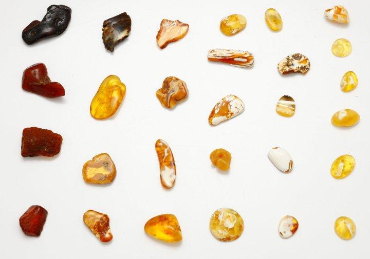 Уникальные цвета балтийского янтаря. Полированные камни.