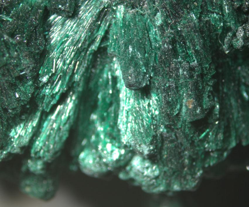 Малахит, изображение снято под стереоскопическим микроскопом